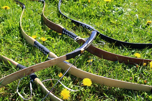 Difference Between a Recurve vs Longbow